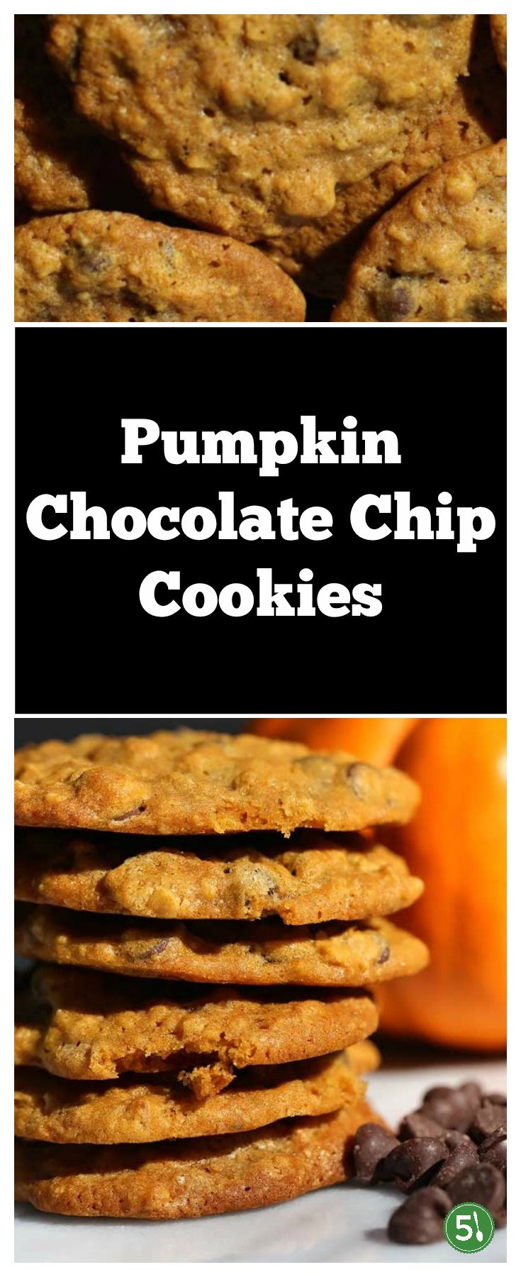 Soft pumpkin chocolate chip cookies that are easy to make and are absolutely DELICIOUS.  This is the best pumpkin chocolate chip cookies recipe I've found.