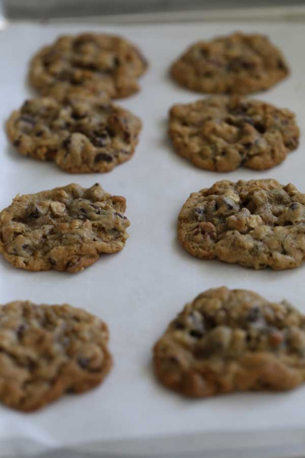 chocolate-chip-orange-pecan-cookies-on-cookie-sheet