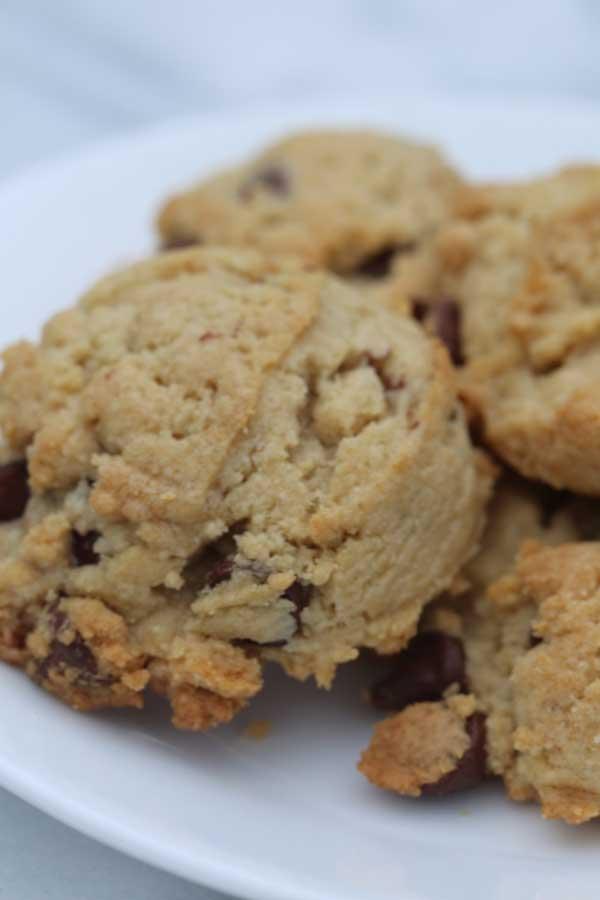 dorie greenspan's hazelnut chocolate chip cookie recipe