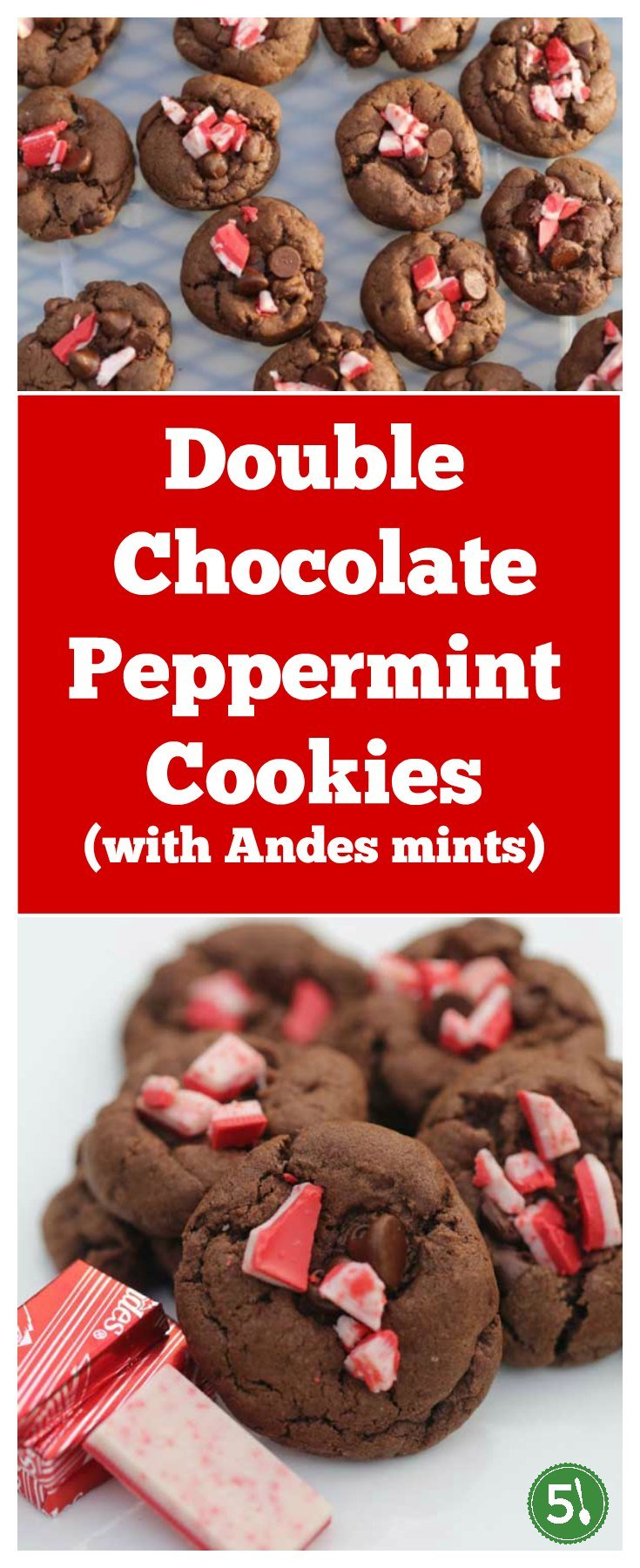 Easy double chocolate peppermint cookies recipe that are great for your list of holiday gift ideas.  These cookies smell heavenly while baking in the warm oven and are one of our favorite holiday desserts.